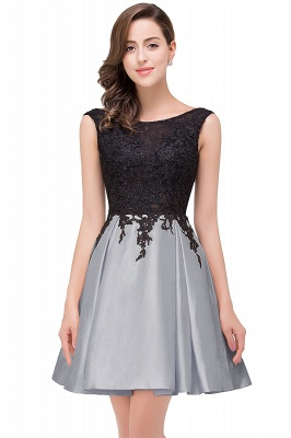 EVA | A-line Sleeveless Lace Appliques Short Prom Dresses_6