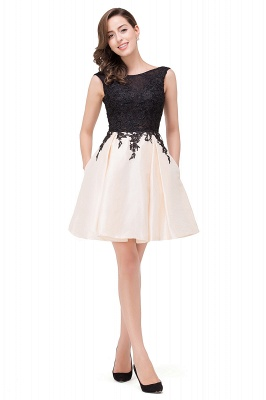 EVA | A-line Sleeveless Lace Appliques Short Prom Dresses_12