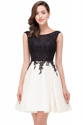 EVA | A-line Sleeveless Lace Appliques Short Prom Dresses_2