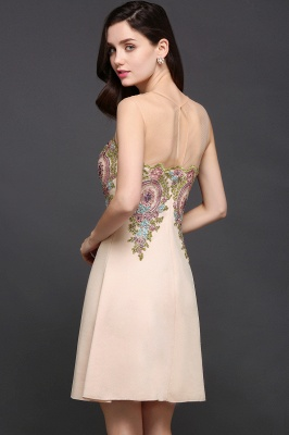 A-line Scoop Chiffon Short Homecoming Dress With Appliques_7