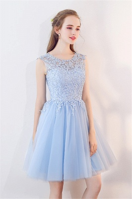 A-line Sleeveless Short Appliqued Top Tulle Homecoming Dresses_5