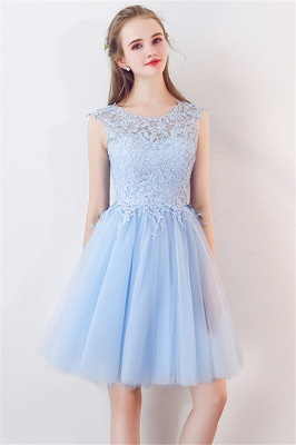 A-line Sleeveless Short Appliqued Top Tulle Homecoming Dresses_8