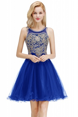 Cute Crew Neck Puffy Homecoming Dresses with Lace Appliques | Beaded Sleeveless Open back Black Teens Dress for Cocktail_15