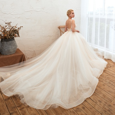 Sexy Sleeveless V Neck Tulle Ball Gown Wedding Dresses with Zipple_7