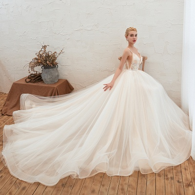Sexy Sleeveless V Neck Tulle Ball Gown Wedding Dresses with Zipple_4