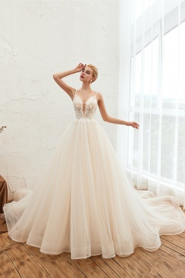 Sexy Sleeveless V Neck Tulle Ball Gown Wedding Dresses with Zipple_6