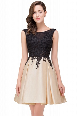 EVA | A-line Sleeveless Lace Appliques Short Prom Dresses_1