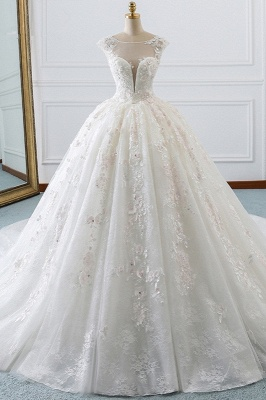 Ball Gown Lace Sleeveless Tulle Wedding Dresses_1