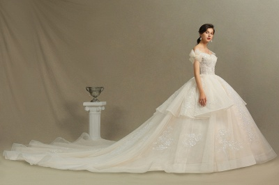 Elegant Off-the-Shoulder Tulle Lace Ball Gown Floor Length Graden Bridal Gown_5