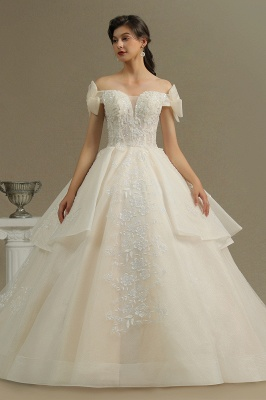 Elegant Off-the-Shoulder Tulle Lace Ball Gown Floor Length Graden Bridal Gown_2