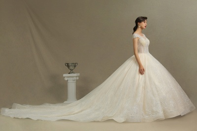 Cap Sleeve Aline Cathedral wedding dress Tulle Lace Appliques Garden Bridal Gown_6