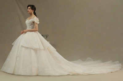 Elegant Off-the-Shoulder Tulle Lace Ball Gown Floor Length Graden Bridal Gown_4