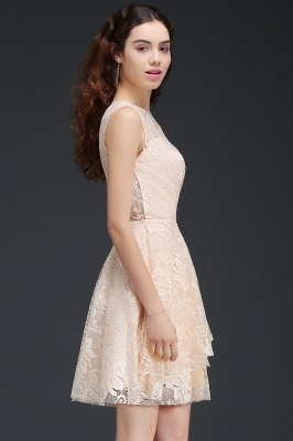 A-line Short Lace Homecoming Dress_6