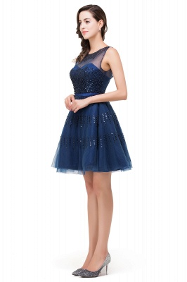 A-Line Sleeveless Crew Tulle Appliques Short Prom Dresses_8