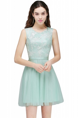 CARMEN | A-line Short Pink Tulle Homecoming Dresses with Lace Appliques_3