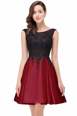 EVA | A-line Sleeveless Lace Appliques Short Prom Dresses_4