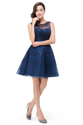 A-Line Sleeveless Crew Tulle Appliques Short Prom Dresses_6