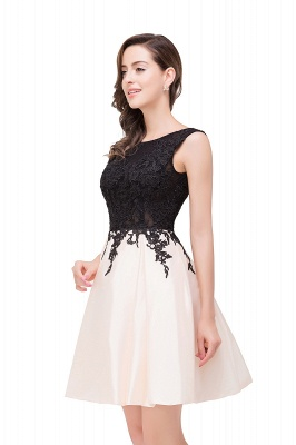 EVA | A-line Sleeveless Lace Appliques Short Prom Dresses_11