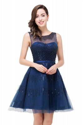 A-Line Sleeveless Crew Tulle Appliques Short Prom Dresses_7
