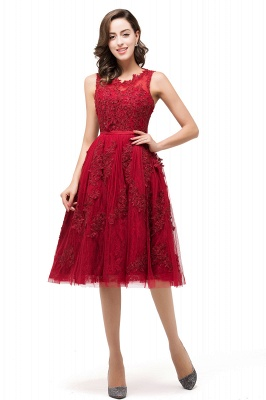 ADELINE | A-line Short Tulle Evening Dress with Appliques_3