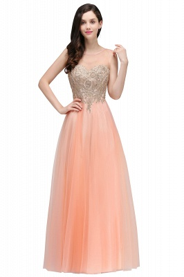 ARIA | A-line Scoop Tulle Gorgeous Evening Dresses with Appliques_1