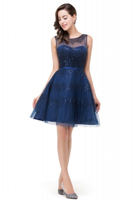 A-Line Sleeveless Crew Tulle Appliques Short Prom Dresses_1