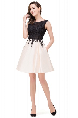 EVA | A-line Sleeveless Lace Appliques Short Prom Dresses_10